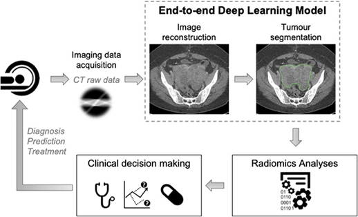 Diagram: Overall workflow of the proposed end-to-end deep learning approach: starting from computed tomography (CT) image reconstruction jointly performed with automated segmentation, the downstream radiomics analyses are independent of scanner manufacturers and can be integrated into clinical decision-making tasks for robust biomarker development.